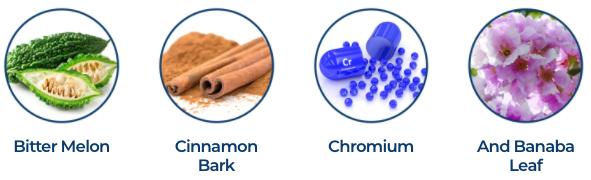 Glucose Shield Ingredients
