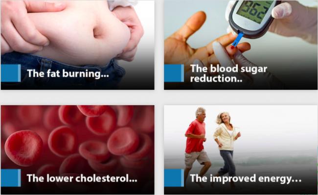 Blood Sugar Support Plus Ingredients